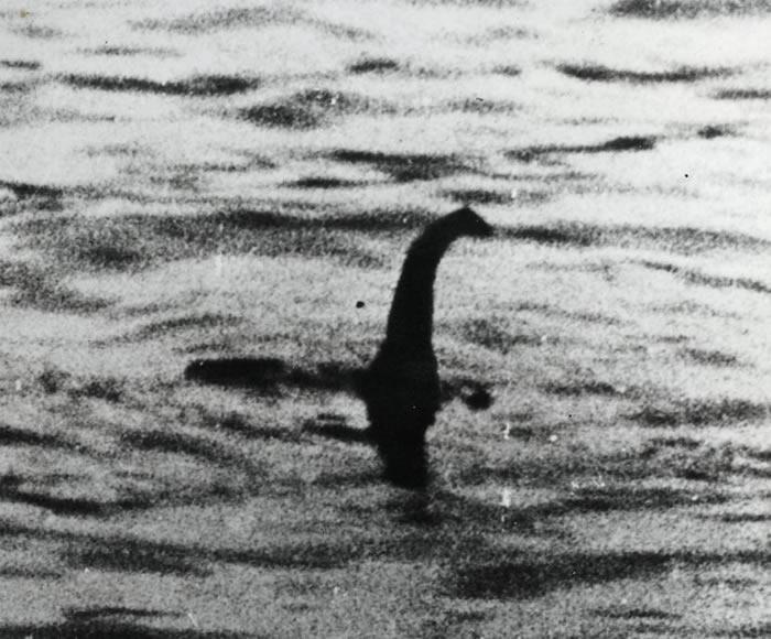 尼斯湖水怪之谜解开?eDNA分析显示可能是巨型鳗鱼