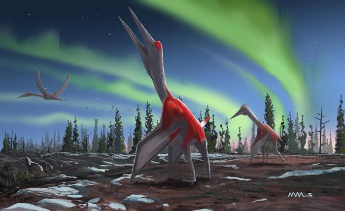 """新种翼龙——""""北风冰龙""""Cryodrakon boreas生活在7600万年前的白垩纪加拿大西部"""