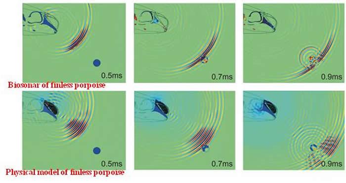 江豚生物声呐及其物理模型对水下目标进行探测