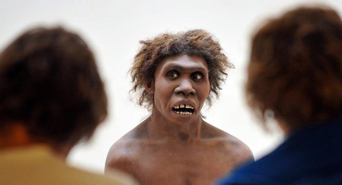 《解剖学记录》杂志:慢性咽鼓管炎可能是导致尼安德特人灭亡的一个原因