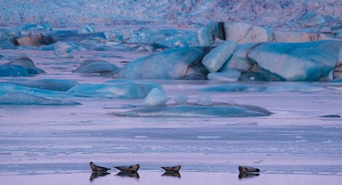 全球约13亿人的生存取决于冰冻圈和海洋的状况