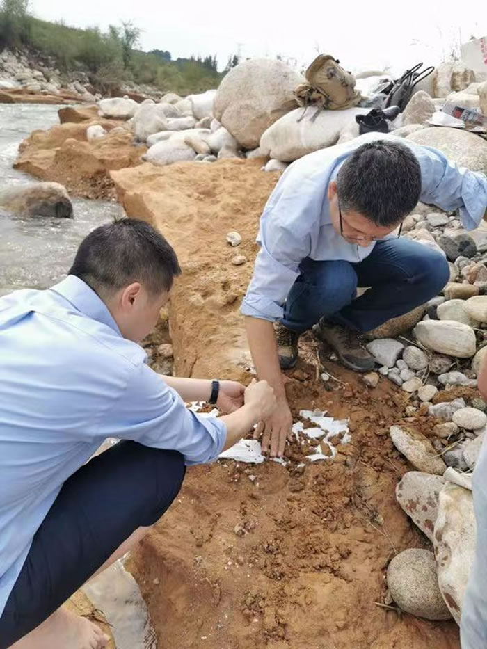 """陕西蓝田发现500万到800万年前""""史前巨兽""""化石"""