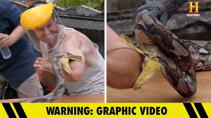 """""""疼痛之王""""(Kings of Pain)节目:澳大利亚科学家Adam Thorn让蟒蛇咬自己的手"""