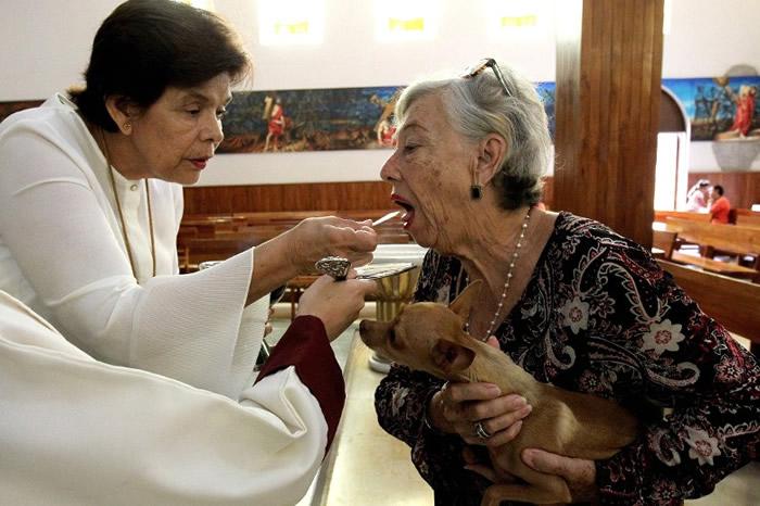 神职人员祝福带同宠物到来的信徒。