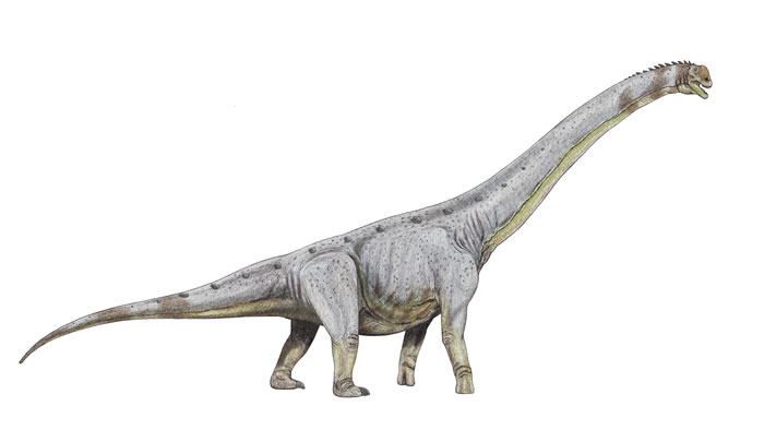 """浙江兰溪""""八仙遗迹""""遗迹原来是恐龙足迹化石"""