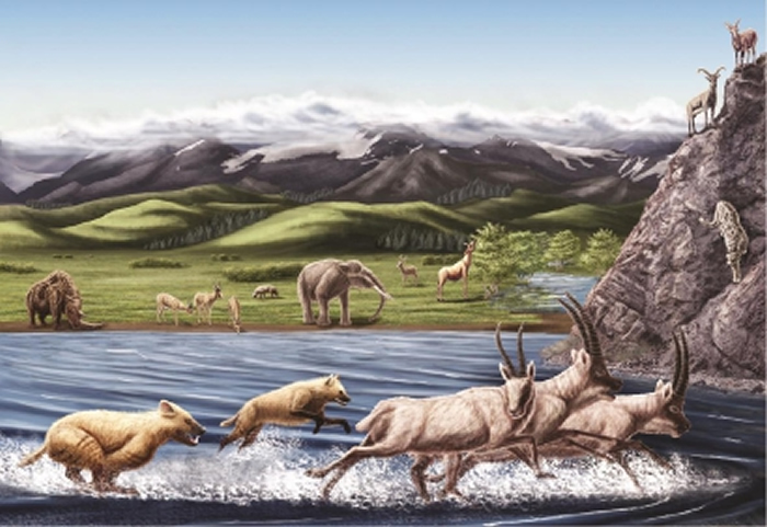 上新世(距今约四五百万年前)西藏阿里地区札达动物群生态复原图