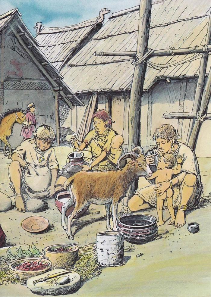 在德国新石器时代村落中发现的奶瓶,让我们得以深入一瞥古代人类如何照顾婴儿。 ILLUSTRATION BY CHRISTIAN BISIG, ARCHÄ