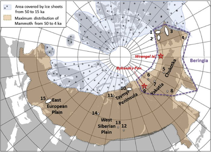 新研究指出猛犸象最后出现的位置:北冰洋的弗兰格尔岛