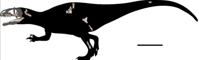 研究团队重组暹罗鲨齿龙的外貌。