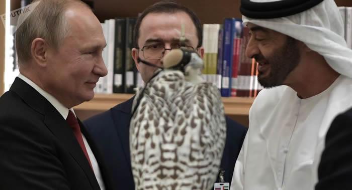 """俄罗斯鸟类学家:普京赠送给沙特和阿联酋的两只猎鹰是""""真正的钻石级"""""""