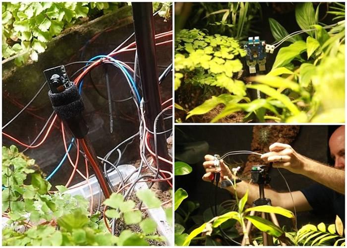 英国伦敦动物园引入新技术 植物自己发电玩自拍