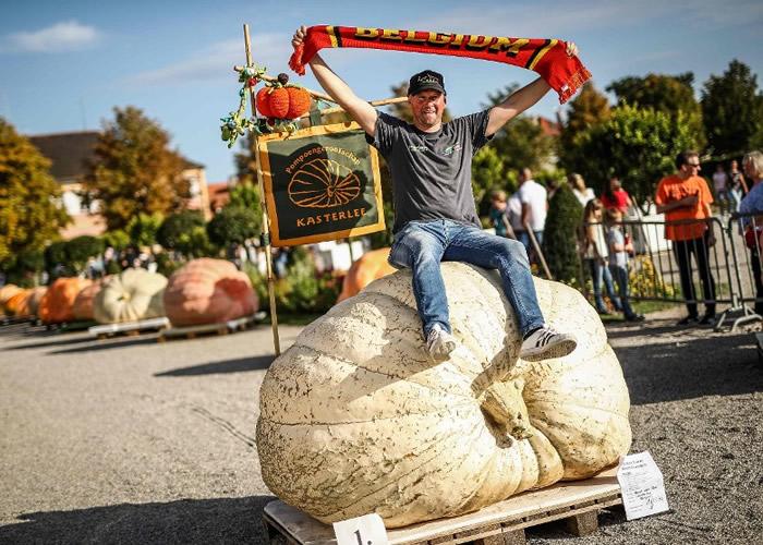 吉尔种出的巨型南瓜夺冠。