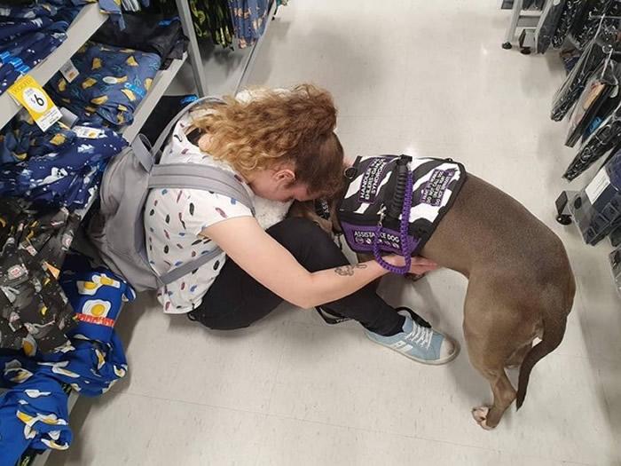 服务犬陪澳洲少女散步时突然抓狂猛叫 主人赶紧打电话叫救护车救回一命