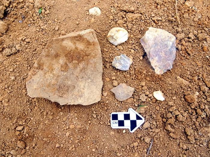 摩天岭遗址采集石制品