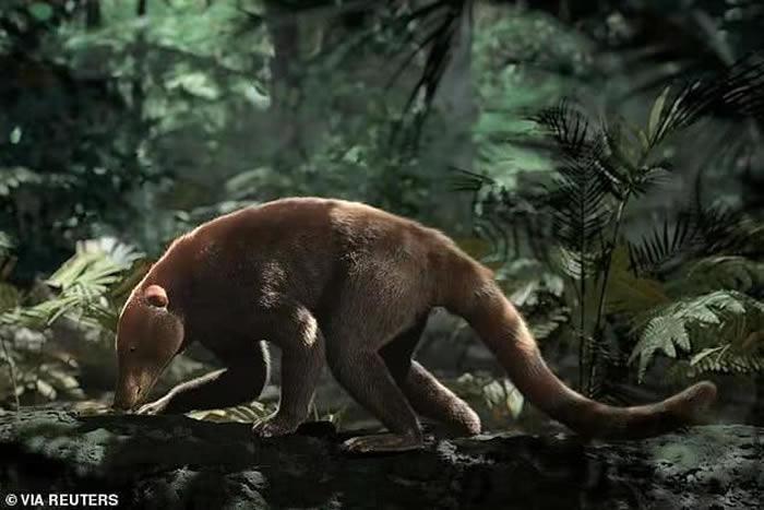 10万之后,棕榈树开始长成了森林,哺乳动物的体型又长成了浣熊大小,差不多恢复到了撞击前的水平。