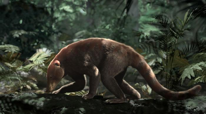 美国科罗拉多州发现的新化石有望揭开6600万前小行星撞击地球后生命复苏之谜