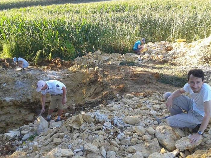 波兰南部山区发现1.5亿年前上龙化石