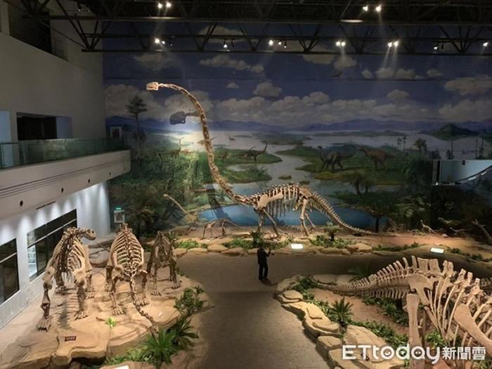 """""""东方龙宫""""自贡恐龙博物馆收藏最多侏罗纪恐龙化石 镇馆之宝是太白华阳龙"""
