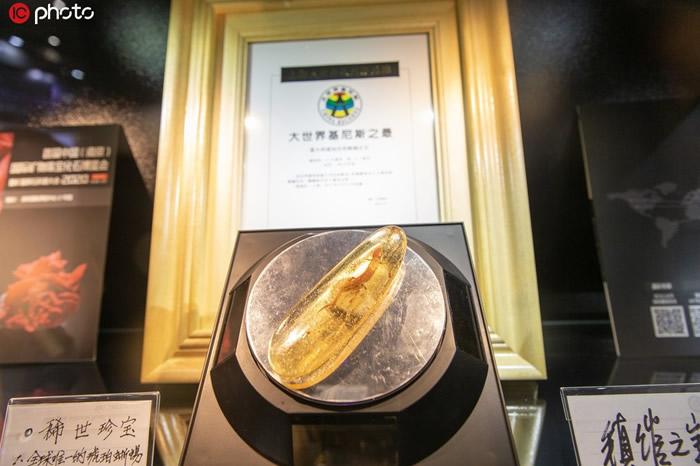 世界最大琥珀水胆蜥蜴化石亮相2019第二届中国国际进口博览会