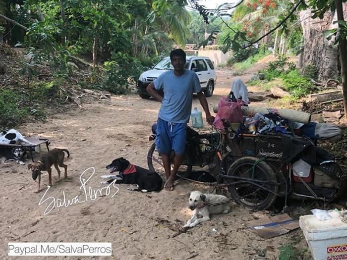 墨西哥男子Edgardo Perros带着一群狗花6年时间行走1.4万公里