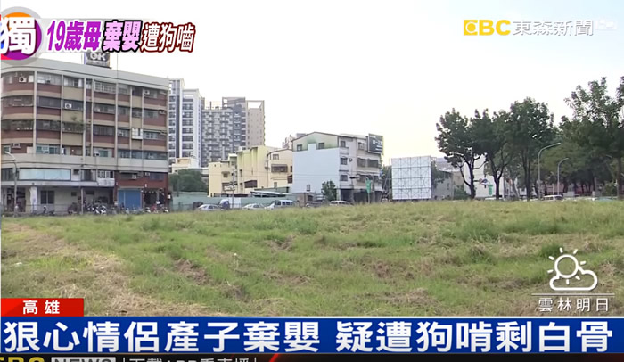 台湾高雄婴儿刚出生就被狠心情侣丢在空地之中 疑被野狗活活啃成白骨