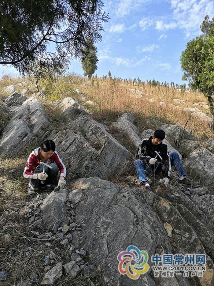 """化石界的""""神雕侠侣"""":雷倩萍和刘青"""