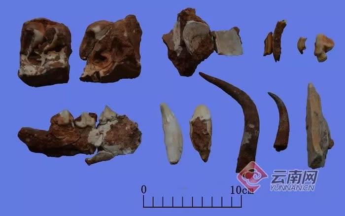 云南省大理州鹤庆县蝙蝠洞旧石器时代遗址