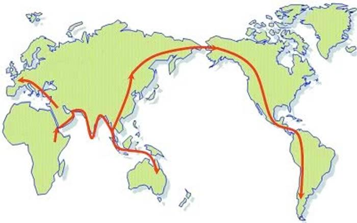 现代人的非洲起源示意图