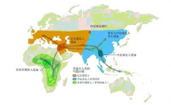 约4.5万年前进入欧洲,约10万-7万年前走出非洲,约2万-1.5万年前进入北美洲,约5万年前到达澳大利亚,约1.5万年前到达南美洲,早期现代人的迁徙路线示意图
