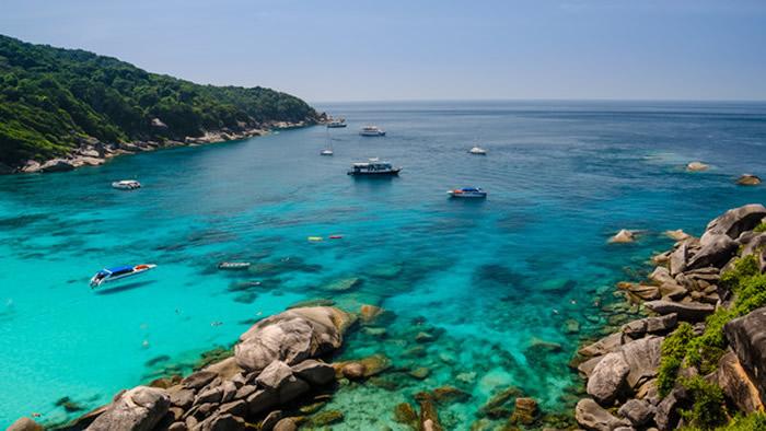 """泰国已经封岛3年的达柴岛环境复育成功 出现全新物种""""翡翠蜗牛"""""""