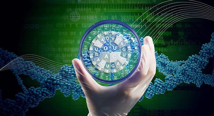 """在线""""年龄测试计算器""""服务的开发人员建议网民了解自身的生物学年龄和身体的退化程度"""