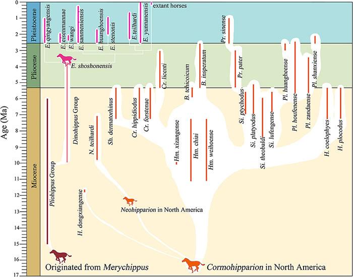 《生态学与演化前沿》:真马事件与中国真马早期