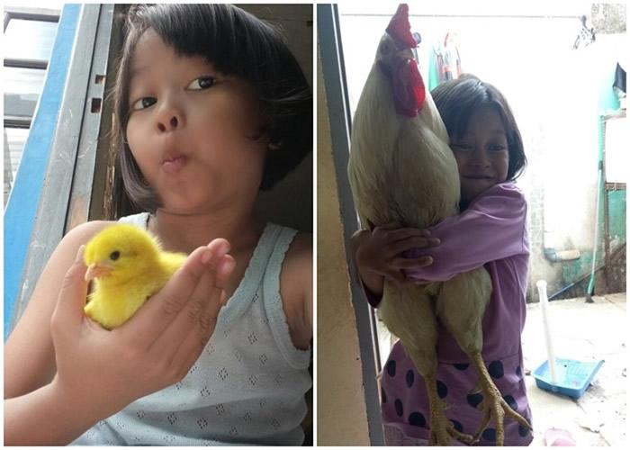 """印尼西爪哇省万隆市政府为改善儿童手机成瘾问题推出""""养小鸡换奖品""""计划"""