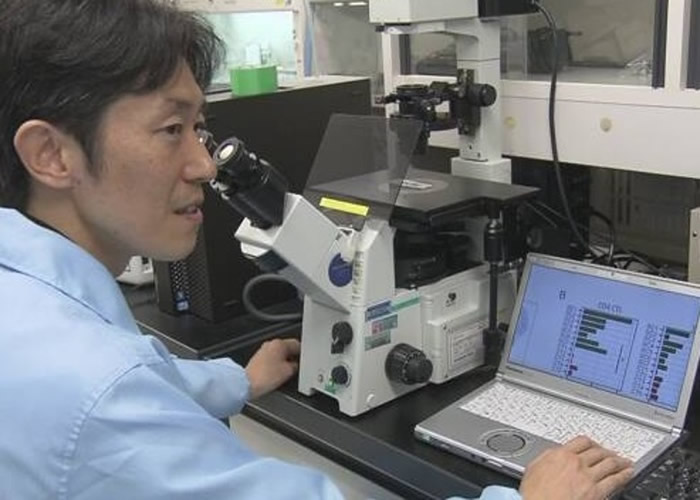 日本学者发现百岁人瑞血液内的特殊免疫细胞含量比常人高逾10倍 或解长寿之谜
