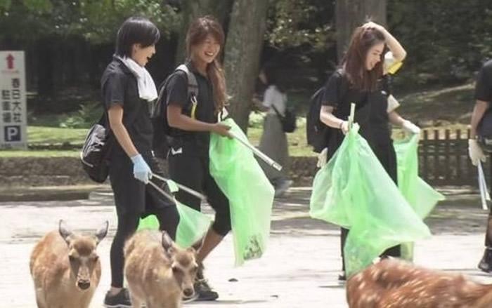 日本奈良公园多只鹿疑因吃塑料袋丧生 保护动物组织进行捡垃圾活动