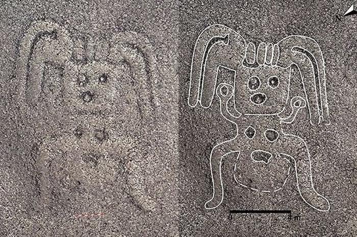 地画上清楚可见五官、四肢及胸部,似乎是一个人类女性的形象 。(图/翻摄自山形大学官网)