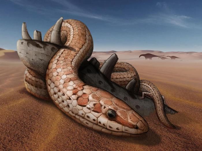 阿根廷出土完整的两腿古蛇颅骨化石 颠覆过往蛇类演化假说