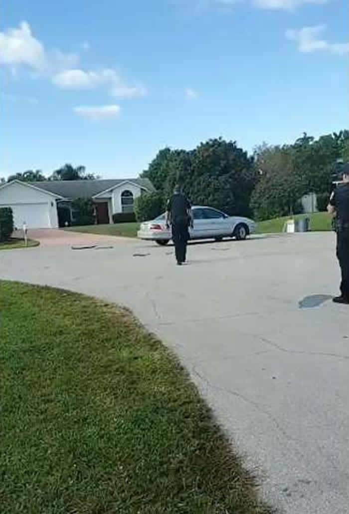 美国佛罗里达州发生奇葩事件:汽车在打转 警察上前发现开车的居然是一只狗