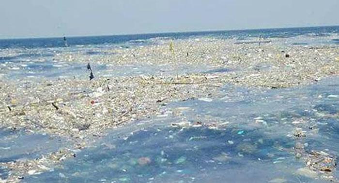 中日韩将合作采取措施应对海洋塑料垃圾问题