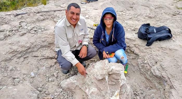 阿根廷科马休国立大学发现8500万年前恐龙化石