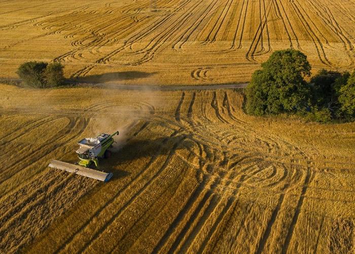 美国智库世界资源研究所:到2040年水资源短缺或危及全球40%灌溉农作物 造成粮食危机
