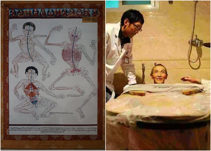中国及印度相继争取把藏医系统列为自己国家的世界非物质文化遗产。