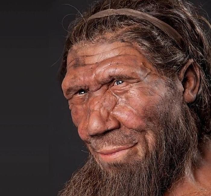 《公共科学图书馆:综合》(PLOS ONE):尼安德特人可能是在没有外部作用的情况下自然灭绝的