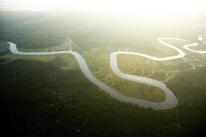 升高的 CO2浓度加上变暖的气温,二者结合的结果是植物消耗的水量增加。 这将导致如这条南卡罗来纳州阿十波河(Ashepoo River)的河流的水量下降。PHO