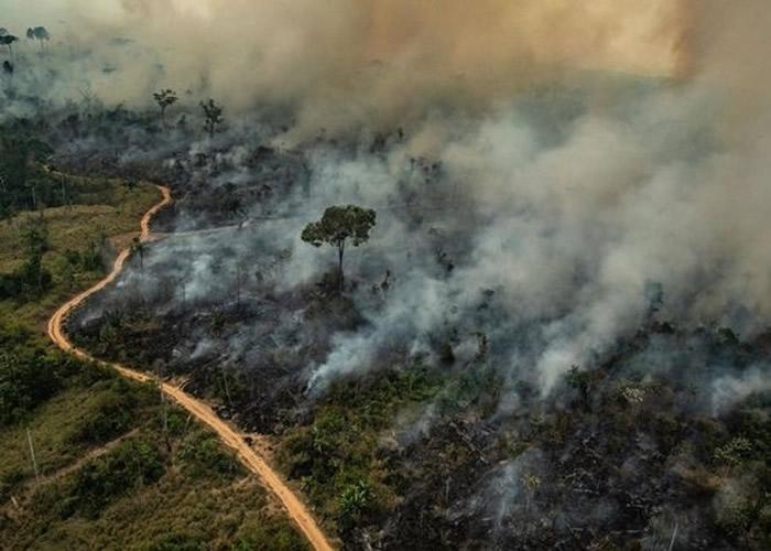 研究指亚马逊雨林大火,或加剧安第斯山脉冰川融化。