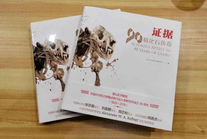 中国古动物馆开设特展《90周年纪念展》 北京猿人头盖骨化石模型重磅展出