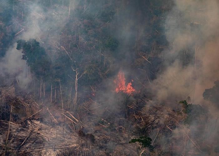 亚马逊森林大火备受国际关注。