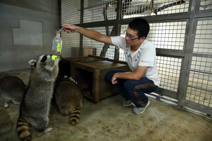 科技城市里的生态绿岛——重生的台湾新竹动物园
