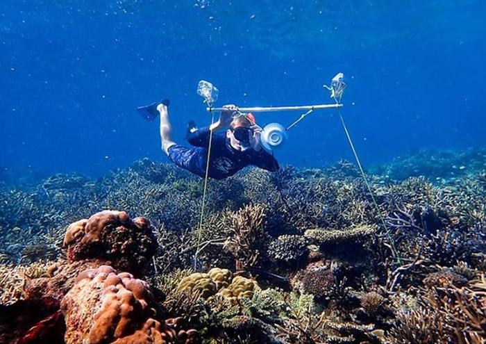 研究团队在水底装设喇叭。