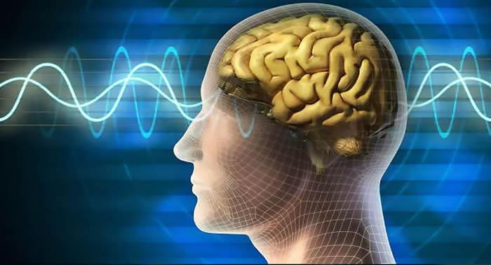 《新英格兰医学杂志》:南极探险队成员的脑容量明显减少
